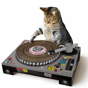 cat scratching decks