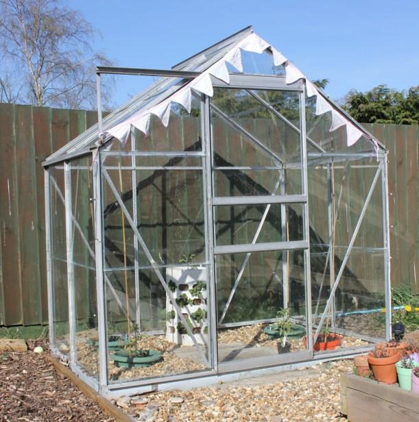 greenhouse spring makeover veggie patch-23
