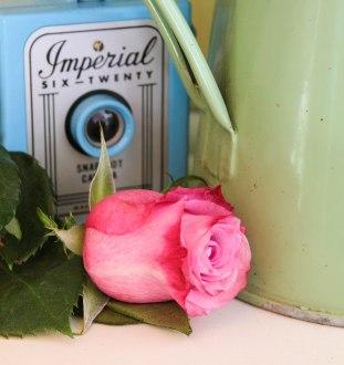 roses bouquet of flowers and vintage caravan_-8