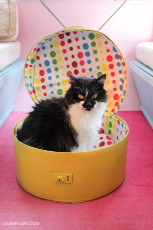 diy cat hat box - suitcase bed for pets-25