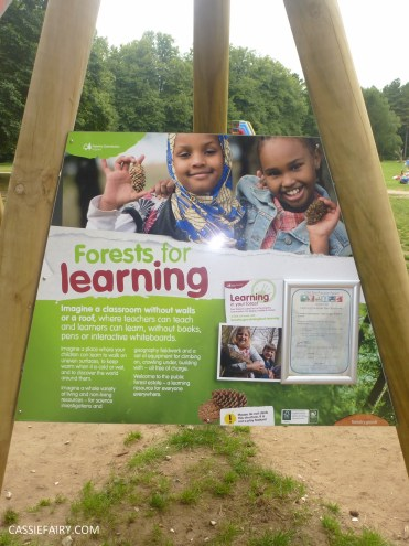 review school summer holiday activity high lodge thetford forest segway adventure go ape_-2