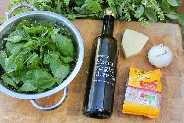 pieday friday diy homemade pesto basic recipe garden produce veggie patch meal dinner-4