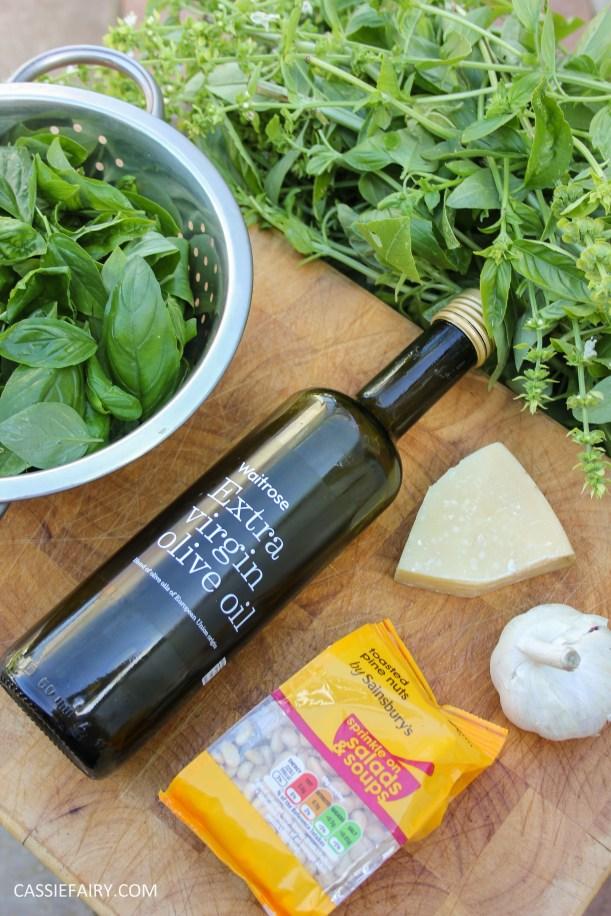 pieday friday diy homemade pesto basic recipe garden produce veggie patch meal dinner-5