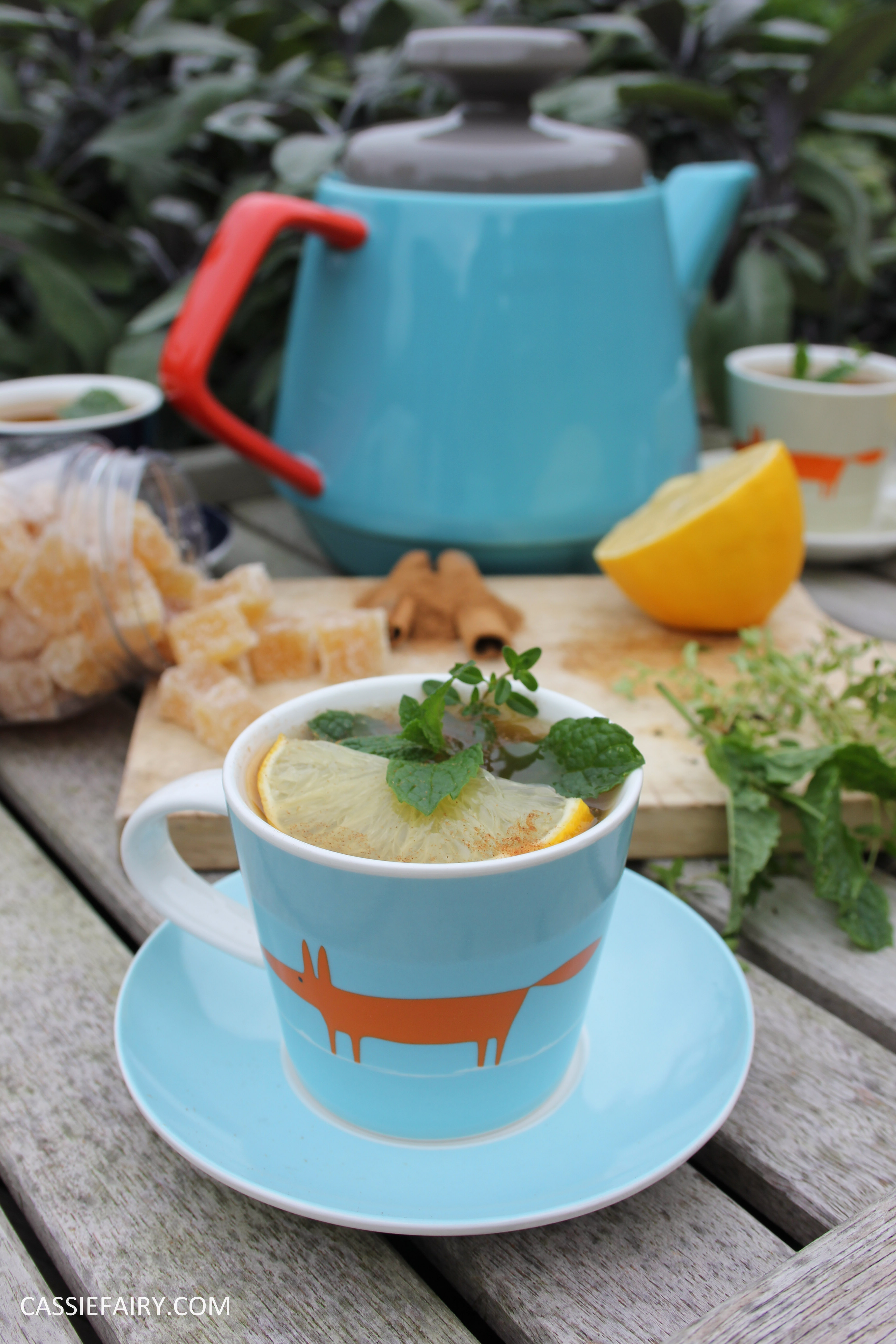 healthy moroccan mint ginger lemon herb infusion tea recipe-12