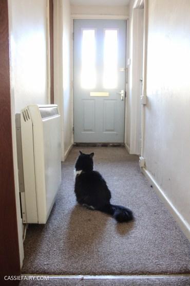 monochrome home interior design black and white decor hallway makeover dado rail rug-4