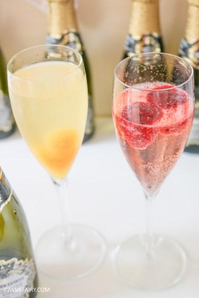 wedding hen party queens birthday celebration idea diy fruit puree ice cubes recipe-19