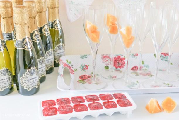 wedding hen party queens birthday celebration idea diy fruit puree ice cubes recipe-31