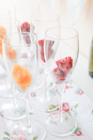wedding hen party queens birthday celebration idea diy fruit puree ice cubes recipe-34