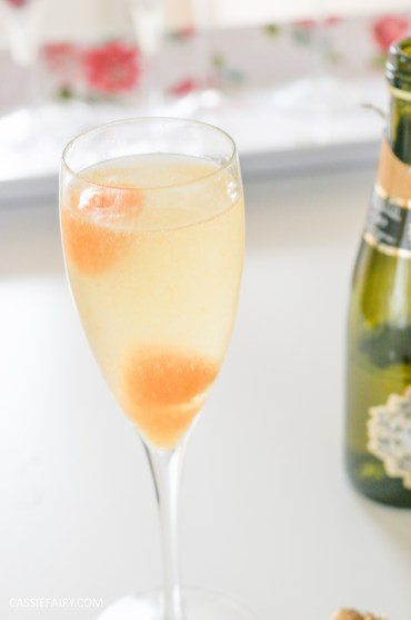 wedding hen party queens birthday celebration idea diy fruit puree ice cubes recipe-39