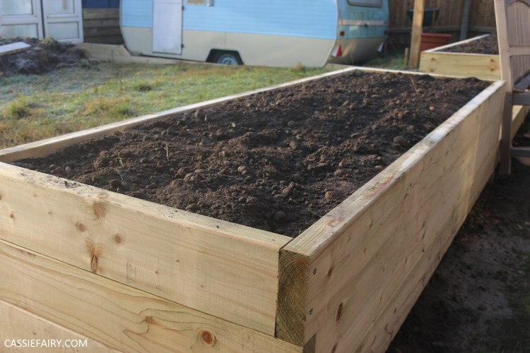 Long, deep planter built from pressure-treated wood