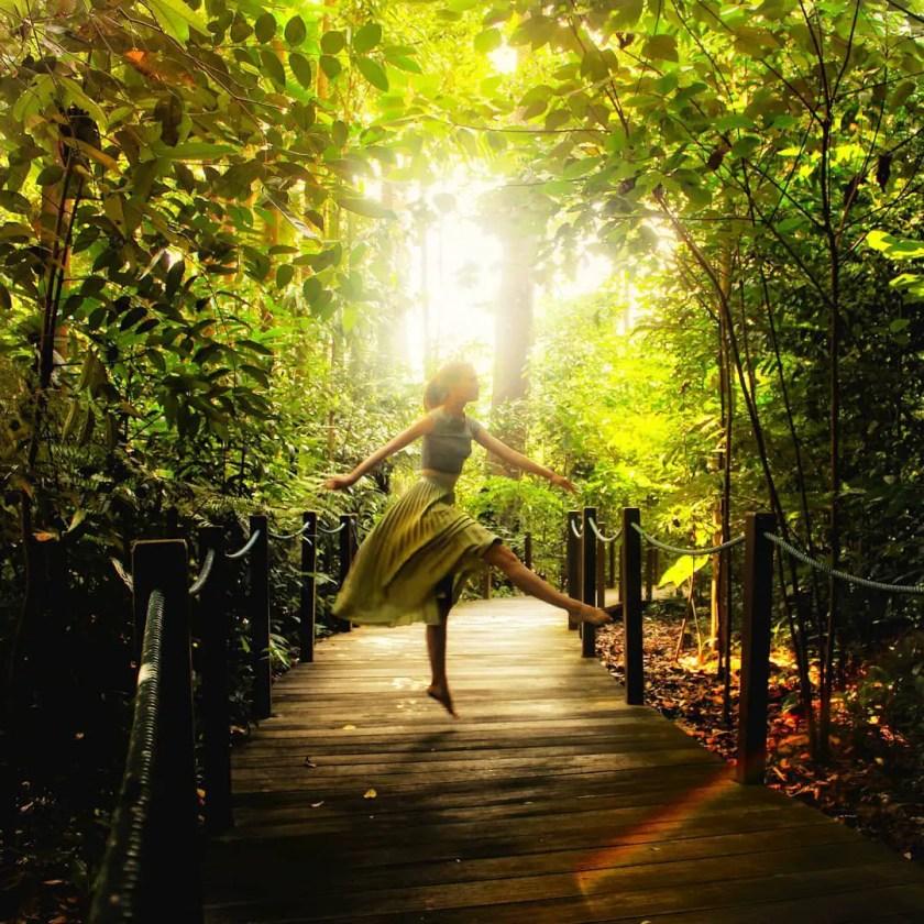 botanic gardens singapore on a budget 2 day itinerary