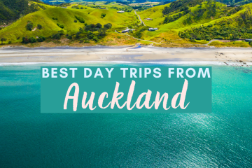 Best day trips from Auckland
