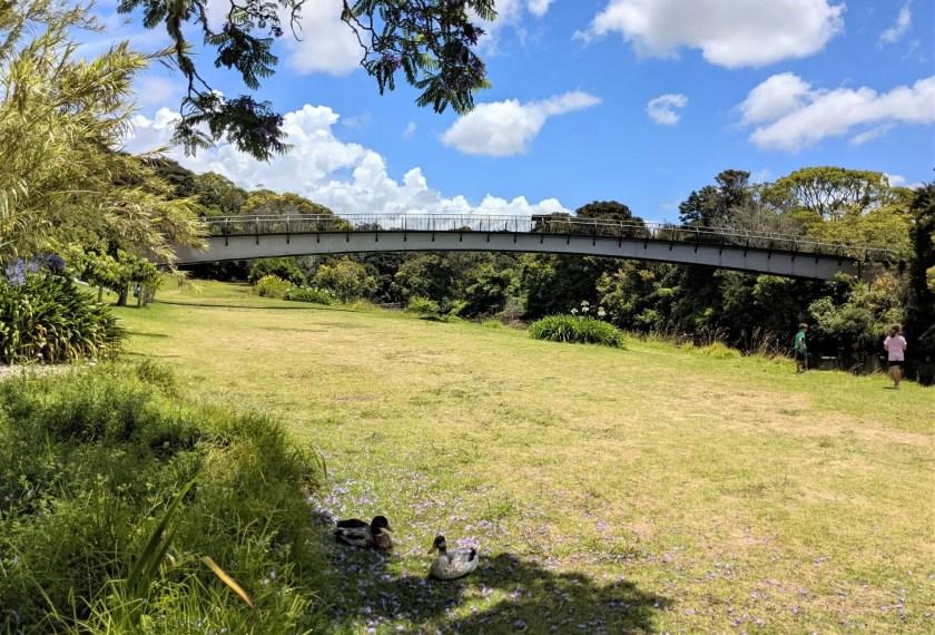 Crossing the bridge in Kerikeri, NZ