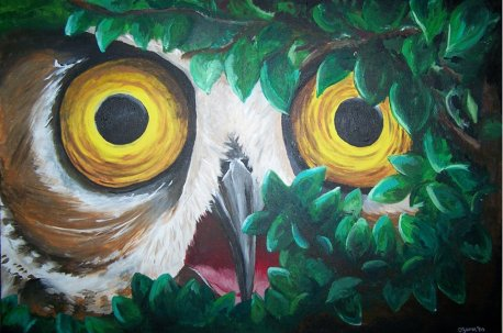 """""""Owl"""" 24"""" x 36"""" Acrylic on stretched canvas. 2013."""