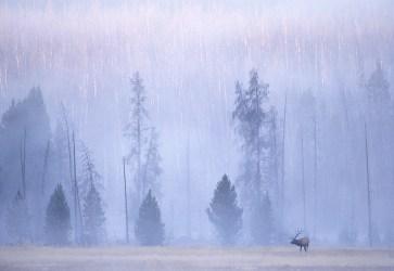 Elk 160-6-2
