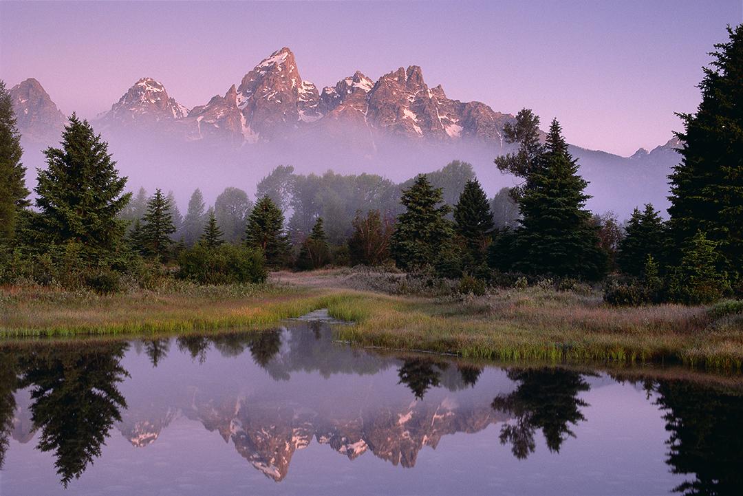 Reflection Pond web