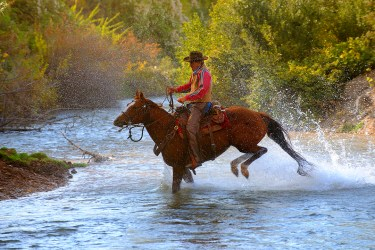 Water Cowboy