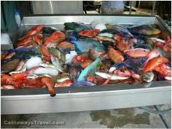 St. Barths fish options