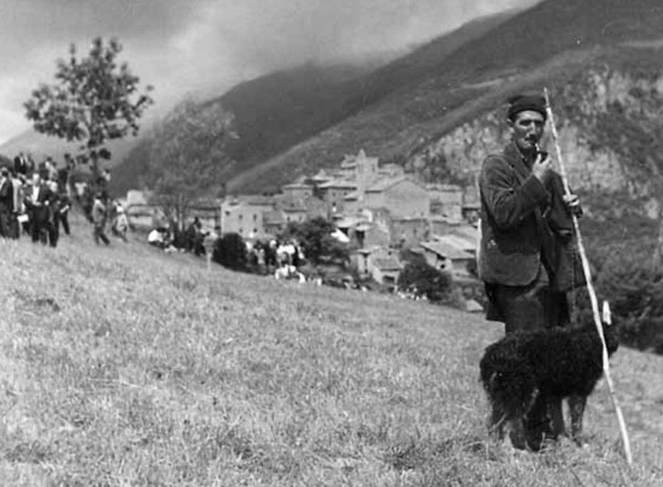 foto-antiga-concurs-gossos-datura-4