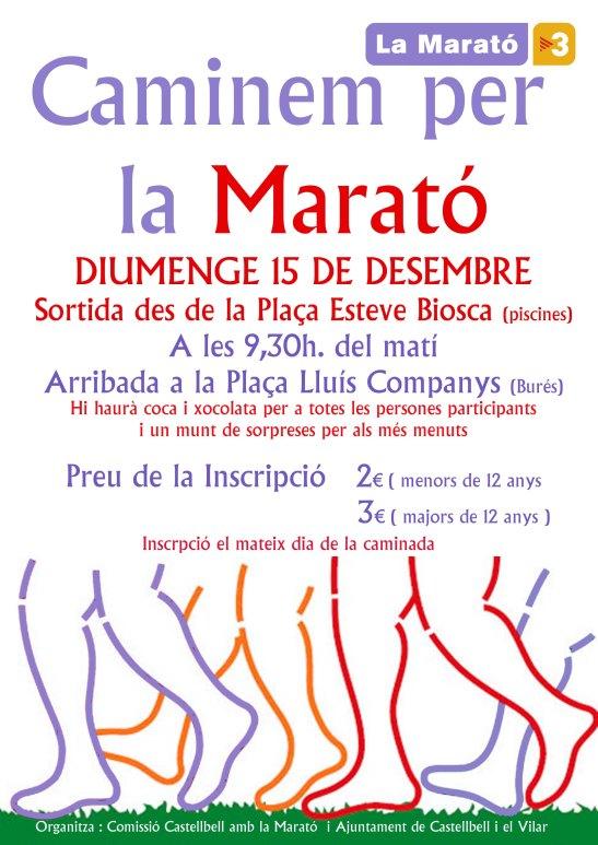 cartell marató 2013 definitiu