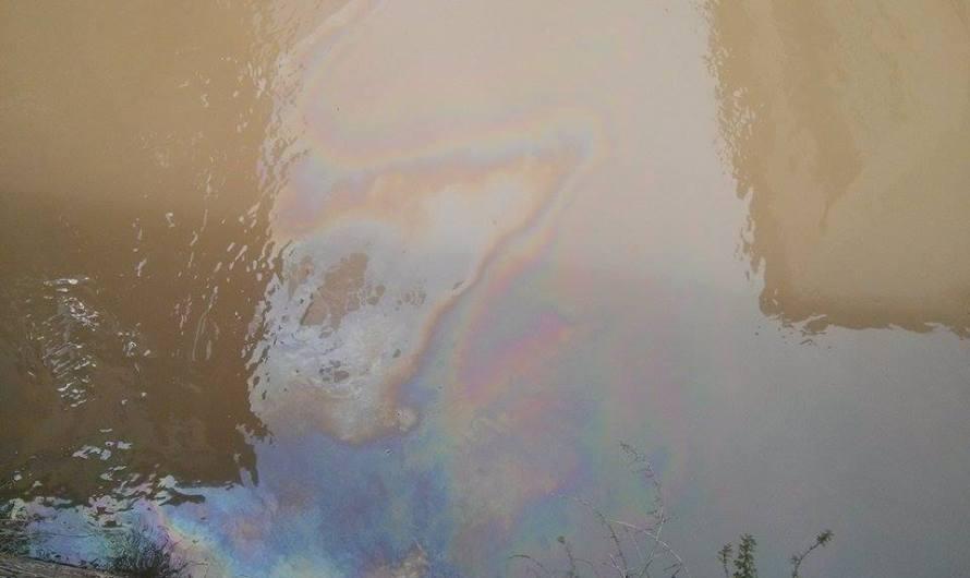 Un vessament d´oli  arriba fins al canal de la resclosa del Burés