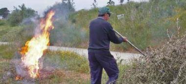 Prohibicio fer foc