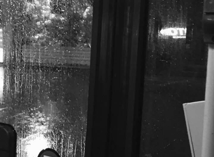 Cròniques de la Lilian: Una tarda de pluja