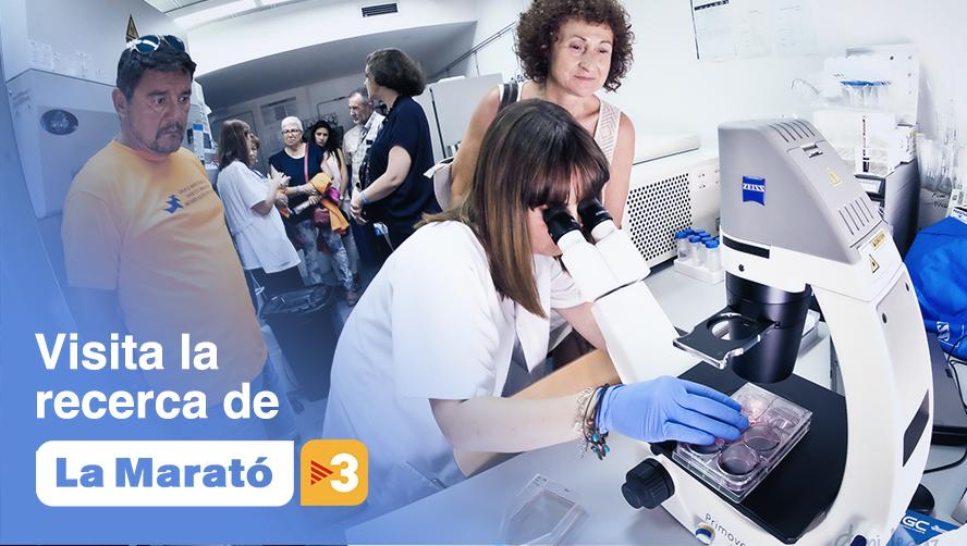 La Marató de TV3 et convida: A visitar els centres de recerca amb projectes finançats amb els fons recollits gràcies a la solidaritat ciutadana.