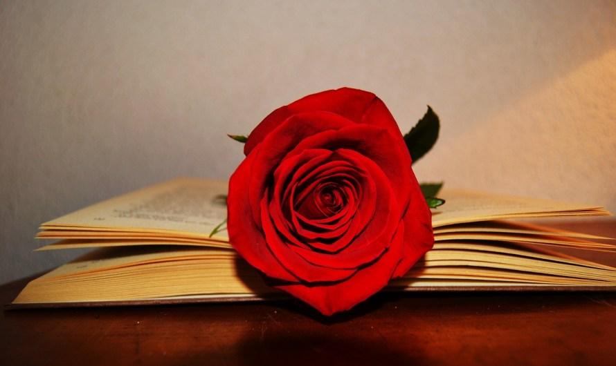 Per Sant Jordi, Althaia vendrà roses solidàries a Manresa, pel projecte de mecenatge infantojuvenil