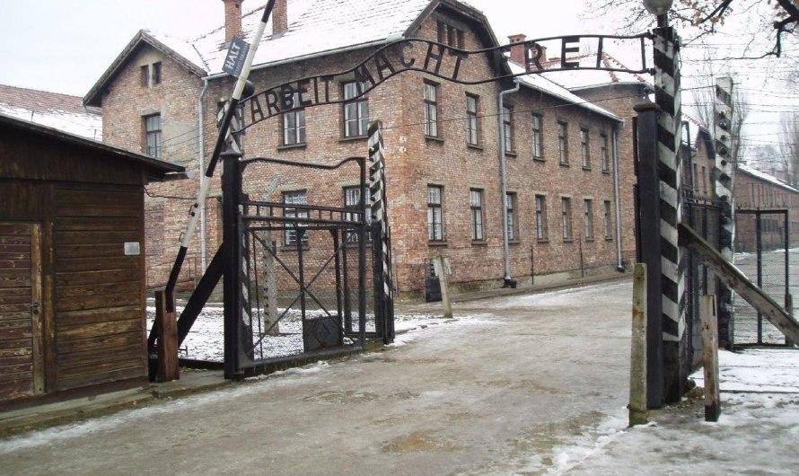 Es compleixen 75 anys de l'alliberament del camp de concentració d'Auschwitz