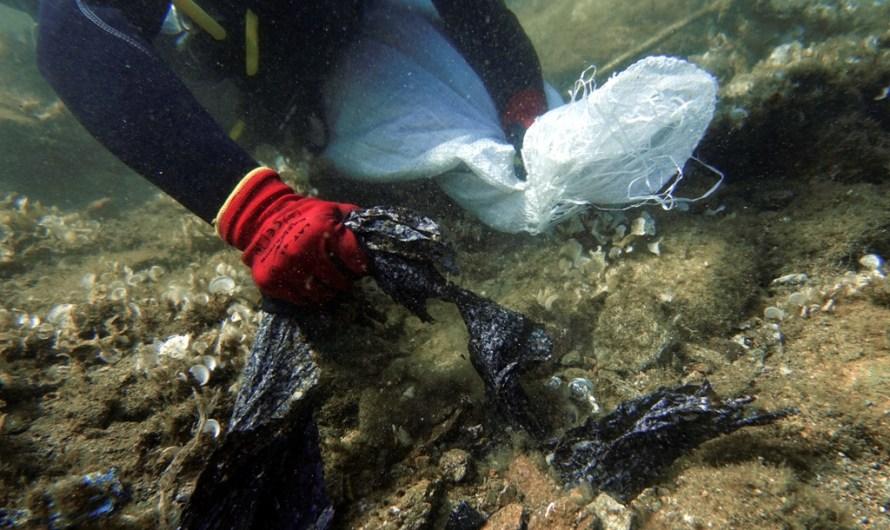 El govern espanyol aprova l'avantprojecte de llei de residus que limita l'ús de plàstics d'un sol ús