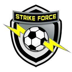 Miami Strike Force