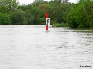 Water levels on our arrival at Seurre.