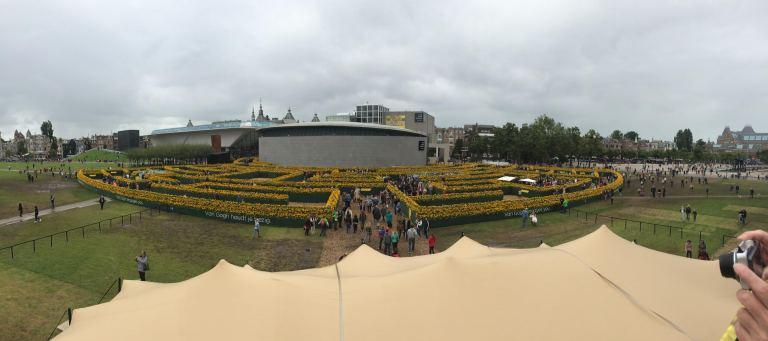 Van Gogh Maze Panorama