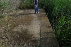 En La Palanca se acumula 1,30 m de cieno mal oliente.