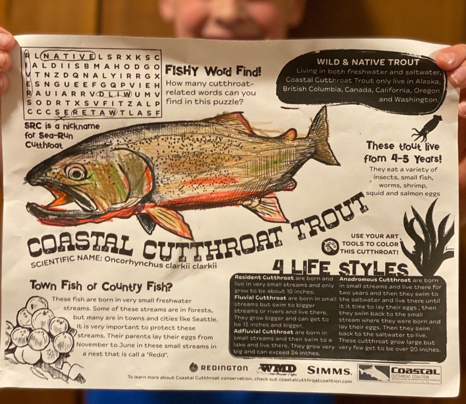 A Different Color of Fly Fishing Marketing - Casting Across