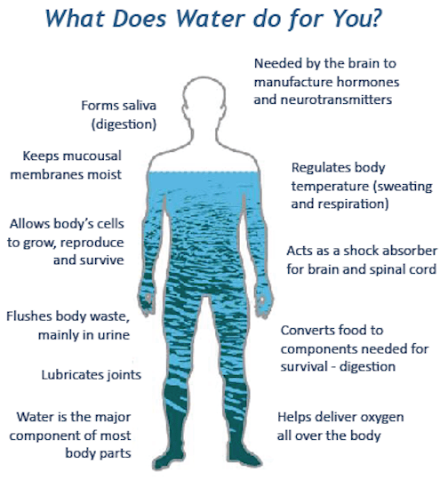 water_body