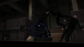 Batman & Catwoman-Executed Teamwork!