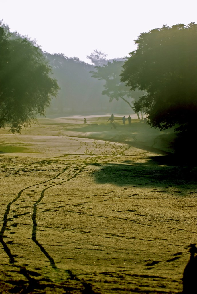 Footprints in the fairway.