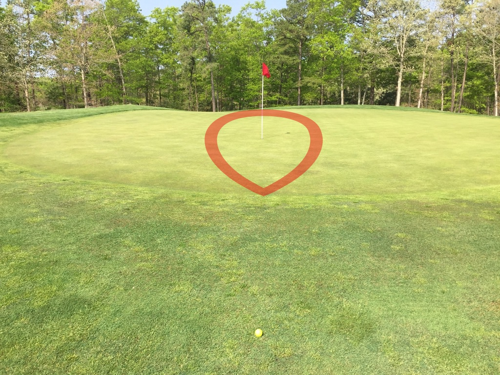 Putt or Pitch - Pitch Results