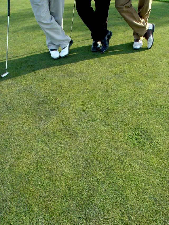 Unknown Golfers