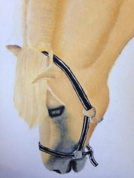 horse_painting_by_acasualstateofmind-d8txrar