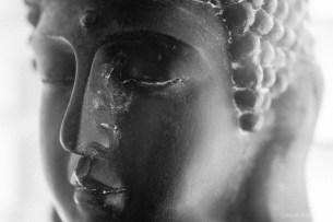 macro lens filters close up-8
