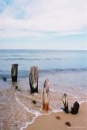 Leica R5 sample photos-32