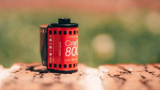 cinestill 800t (2 of 4)