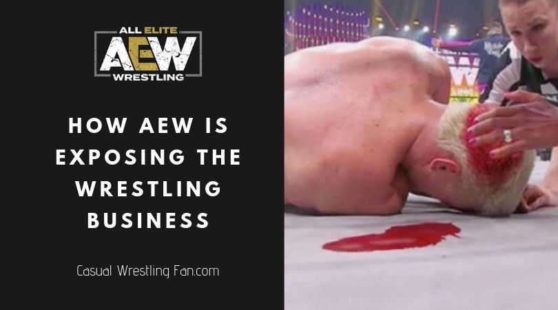 Positives-and-Negatives-of-AEWAll-Elite-Wrestling