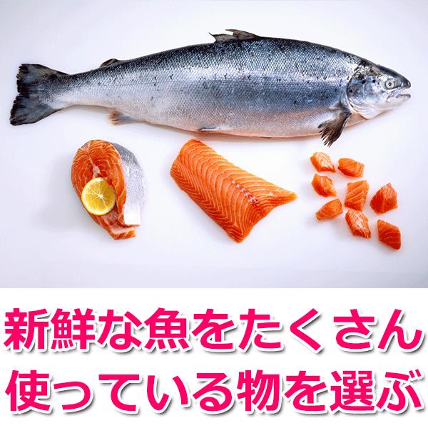 新鮮な魚をたくさん使っている物を選ぶ