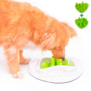 plato para perros laberinto para comer lento en miraflores lima peru all for paws