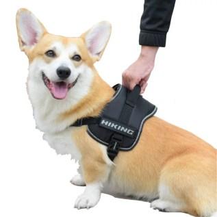 arnes para perros corgi hiking croci