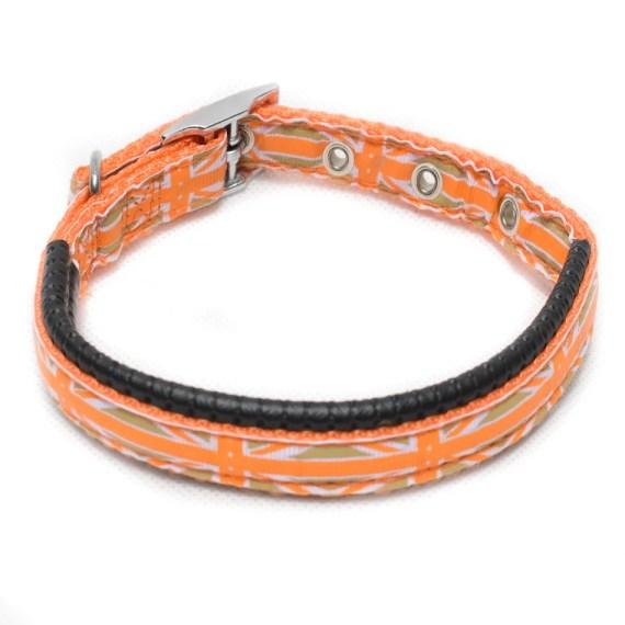 collar para perros en surco miraflores lima peru